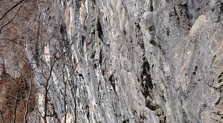 岩場でのクライミング再開に関するガイドラインが発表